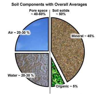 soil-components.jpg