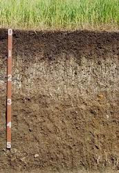 soil-profile.jpg